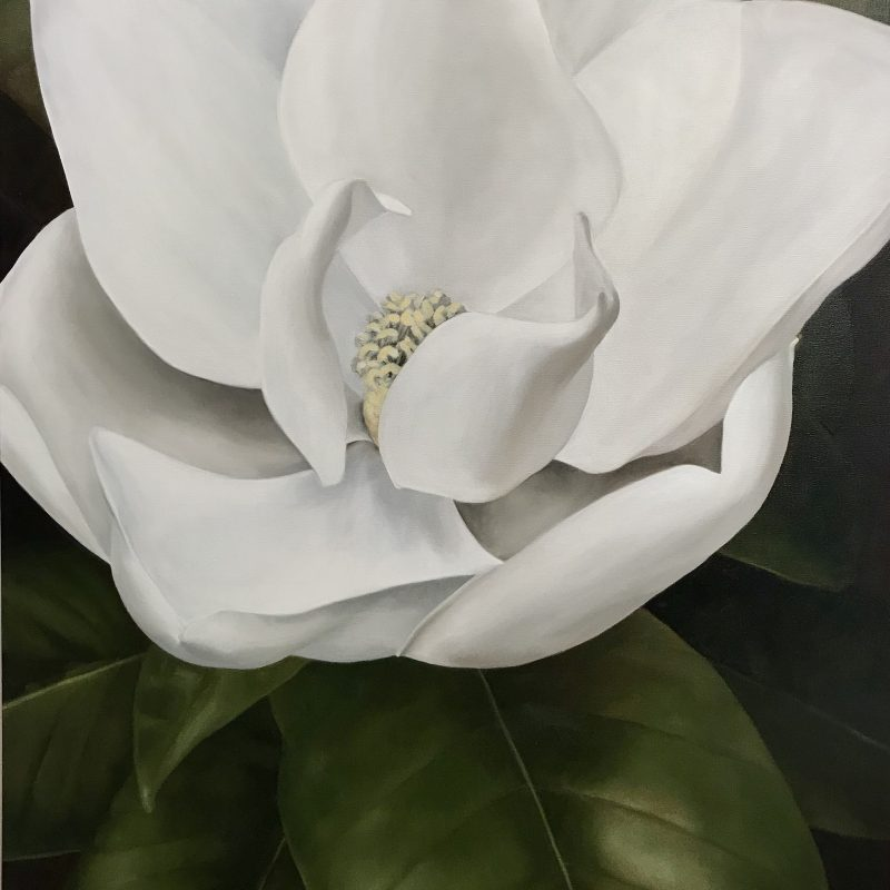 back-home-magnolia-oil-painting/floral-art-by-Amy-Crews