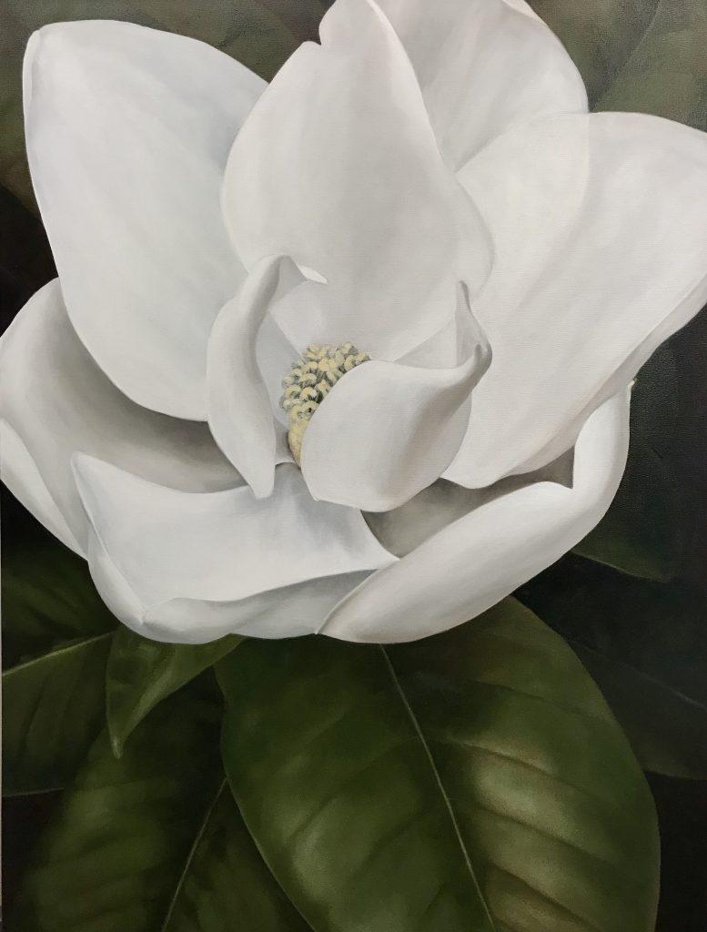 Magnolia Stories & Paintings