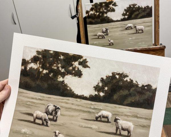 Sheep art print on paper