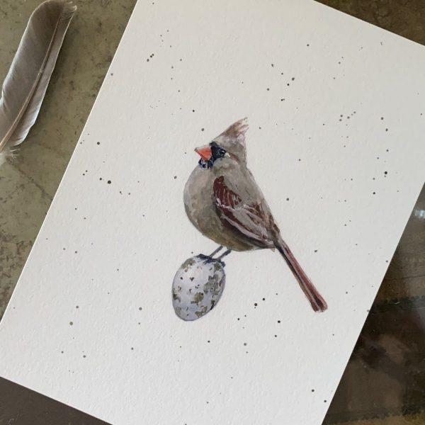 """""""Mrs"""" Cardinal print"""